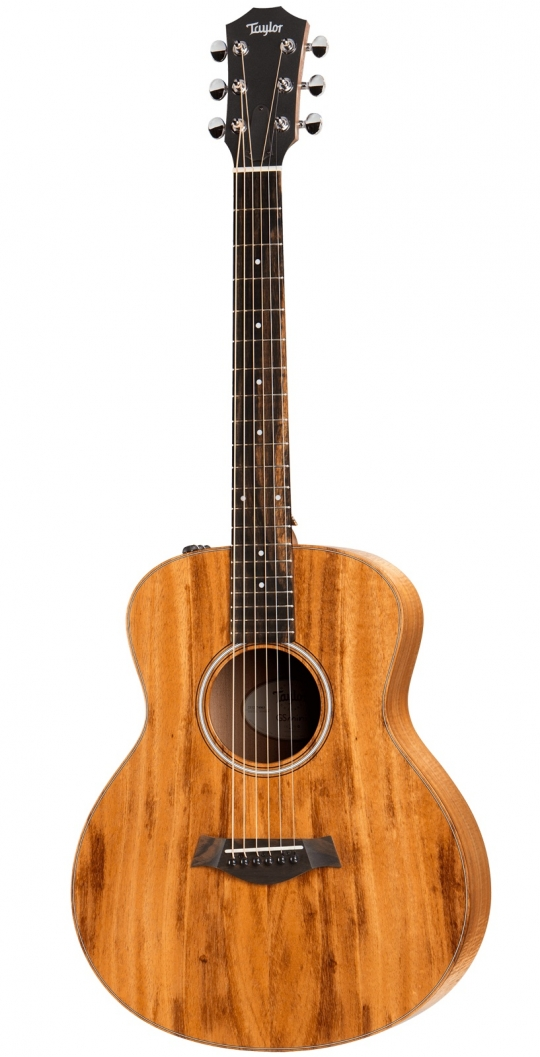270_Taylor-GS-Mini-e-Koa.jpg
